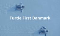 Turtle First Danmark